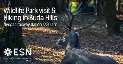 Image of Wildlife Park visit with Hiking in Buda Hills